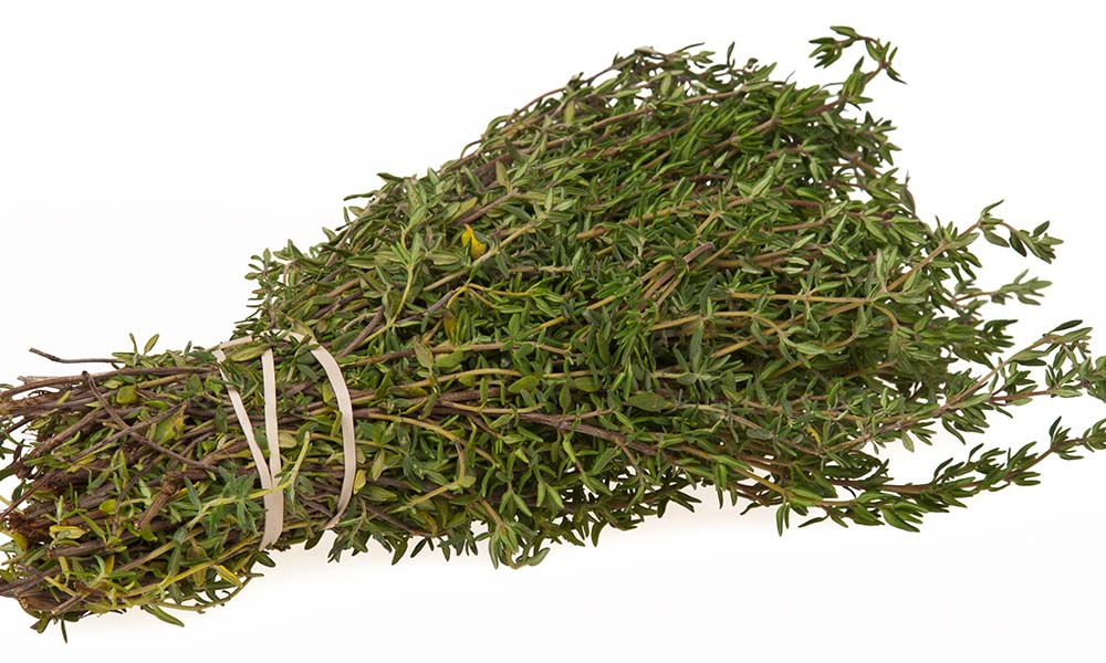 Sekhmet Healing Bunch of Thyme Medicine Culinary Herb